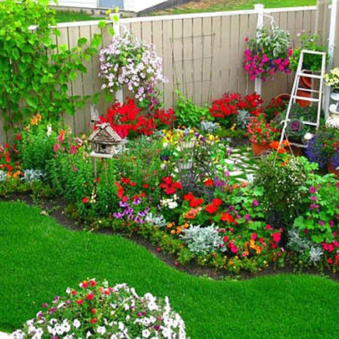"""Backward Garden on Instagram: """". Cottage Flower Garden ..."""