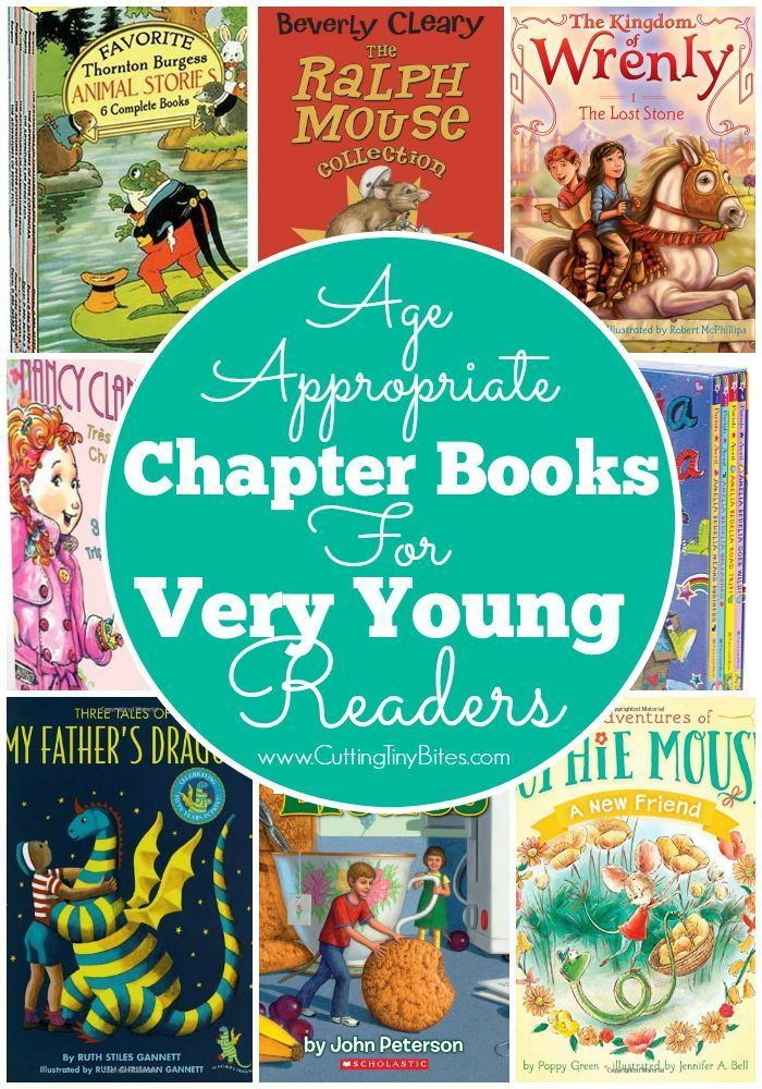 Age Appropriate Chapter Books For Very Young Readers