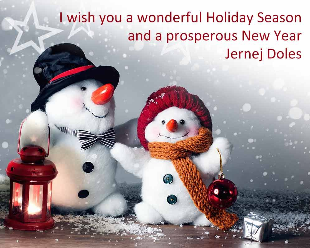 I Wish You A Wonderful Holiday Season And A Prosperous New Year Christmas Special Offers Holiday Season Holiday