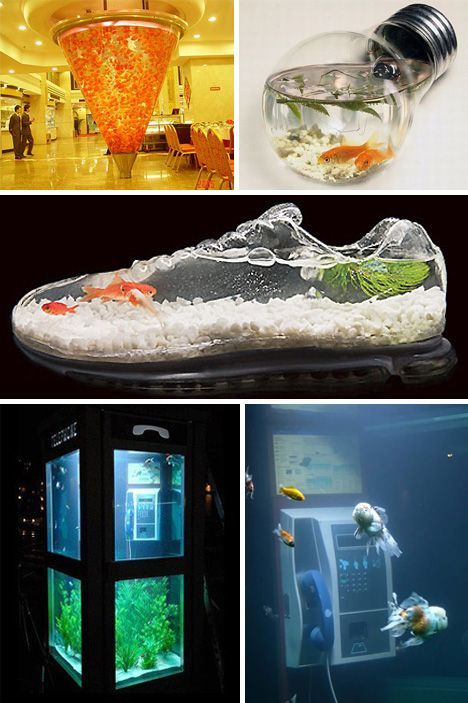 Holy Water! 24 Amazing Aquariums And Clever Fish Tanks