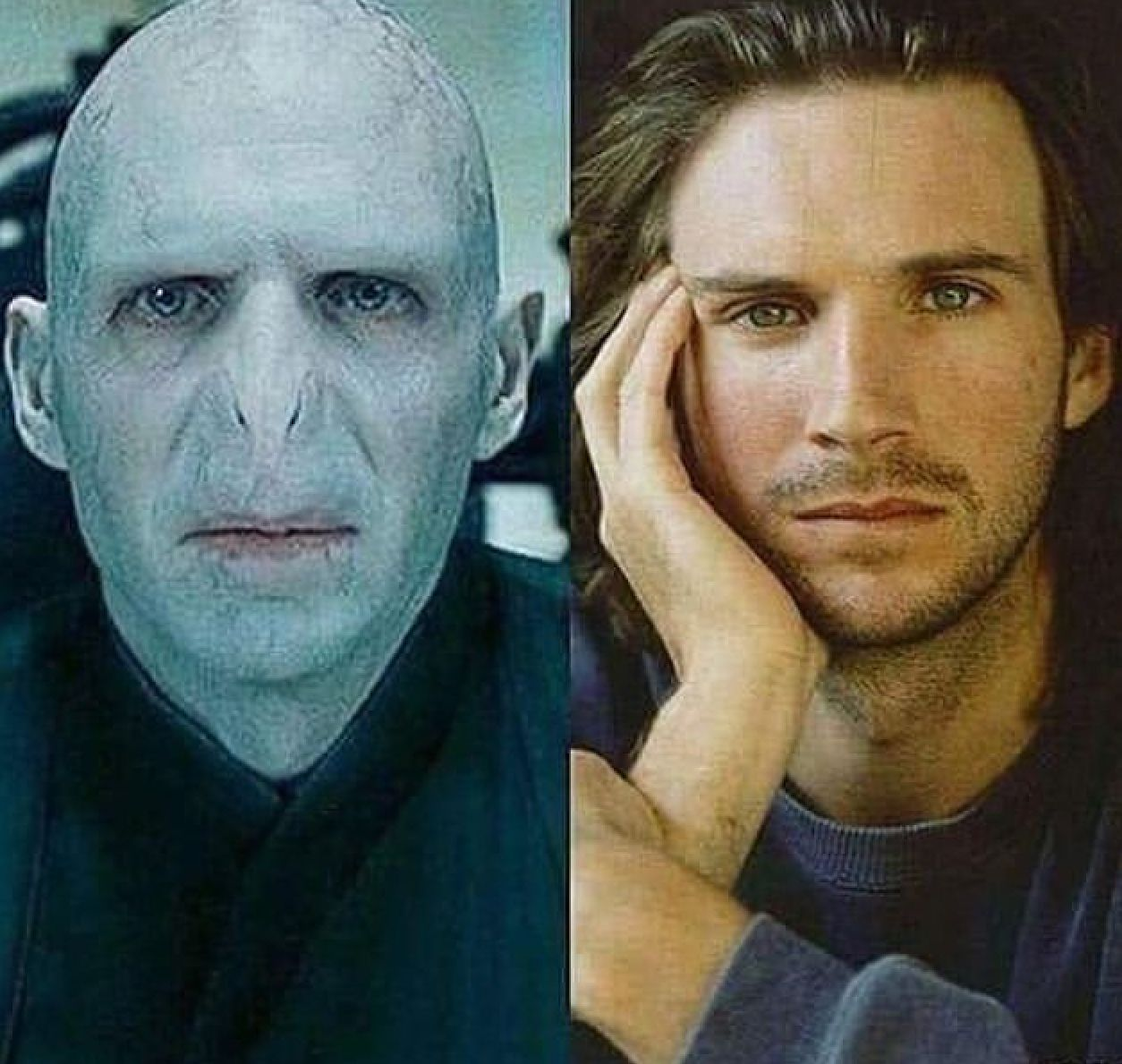 Pin by Emily Barney on Harry Potter | Voldemort actor ...