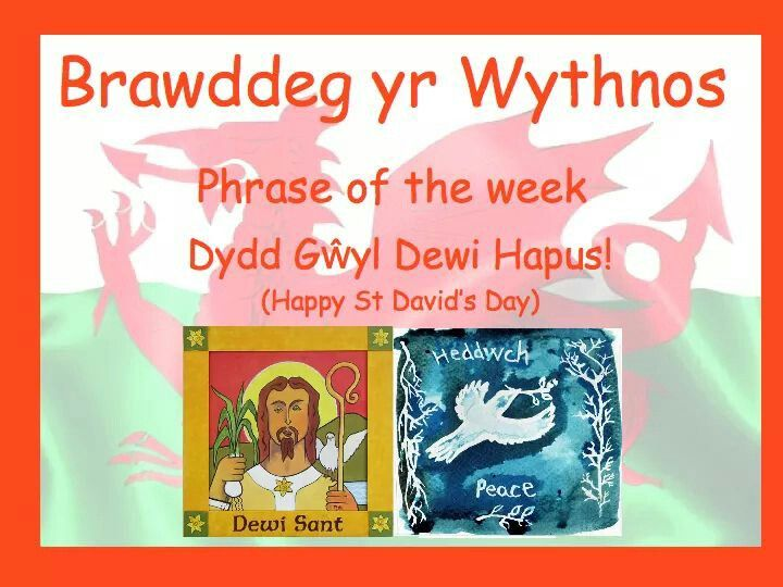 MARCH 1 (from Welsh Learners / Facebook)