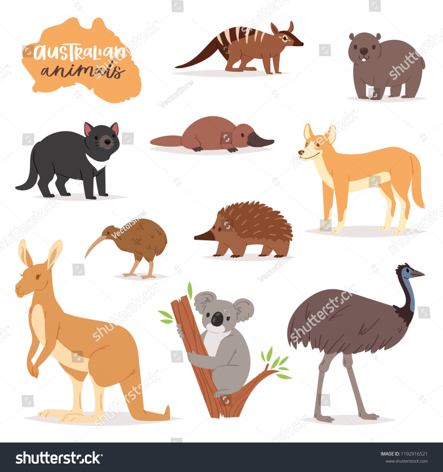 Australian Animals Vector Animalistic Character In Wildlife Australia Kangaroo Koala And Platypus Illustration Set Australian Animals Australia Animals Animals