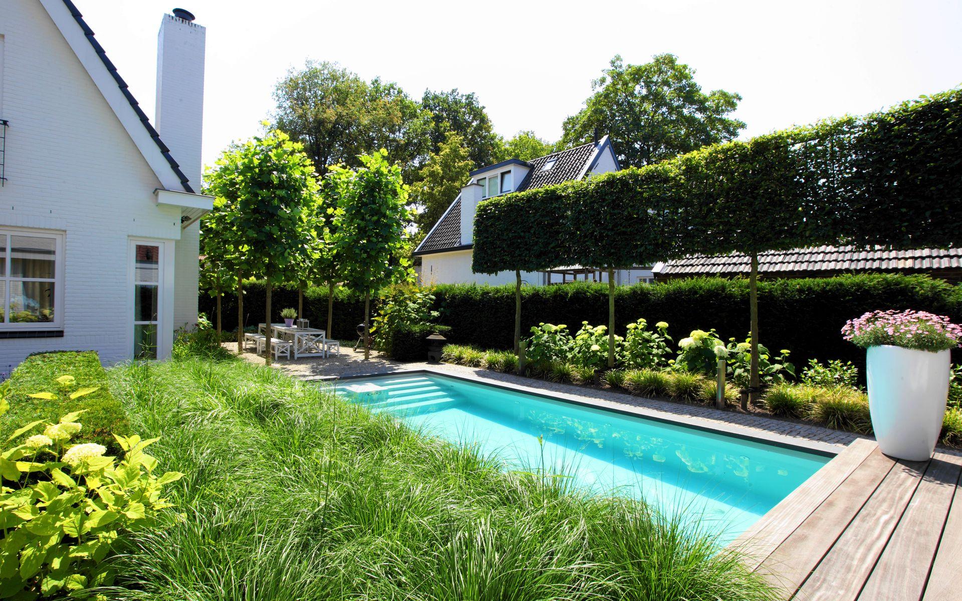 Moderne tuin met zwembad vlonder leibomen schaduwterras platanen split ogr d nowoczesny - Tuin en zwembad design ...