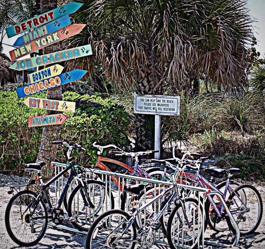 Bikes on the beach...Venice Beach, Florida