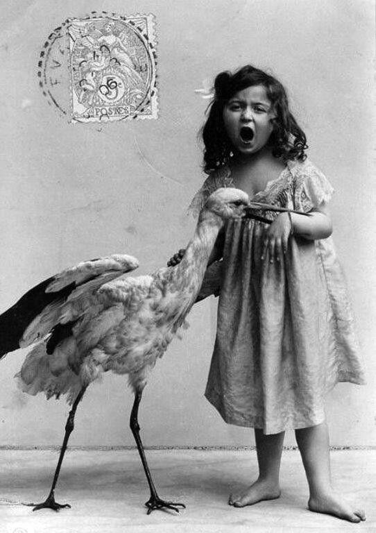 Weird old photograph