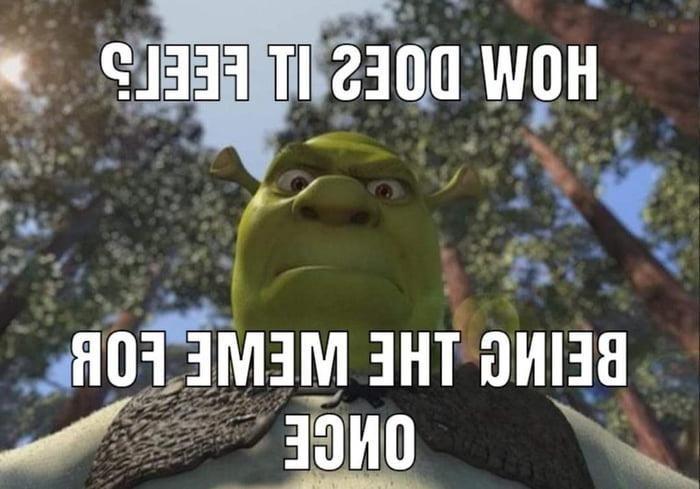 Am I Joke In 2020 Shrek Memes Edgy Memes Jokes