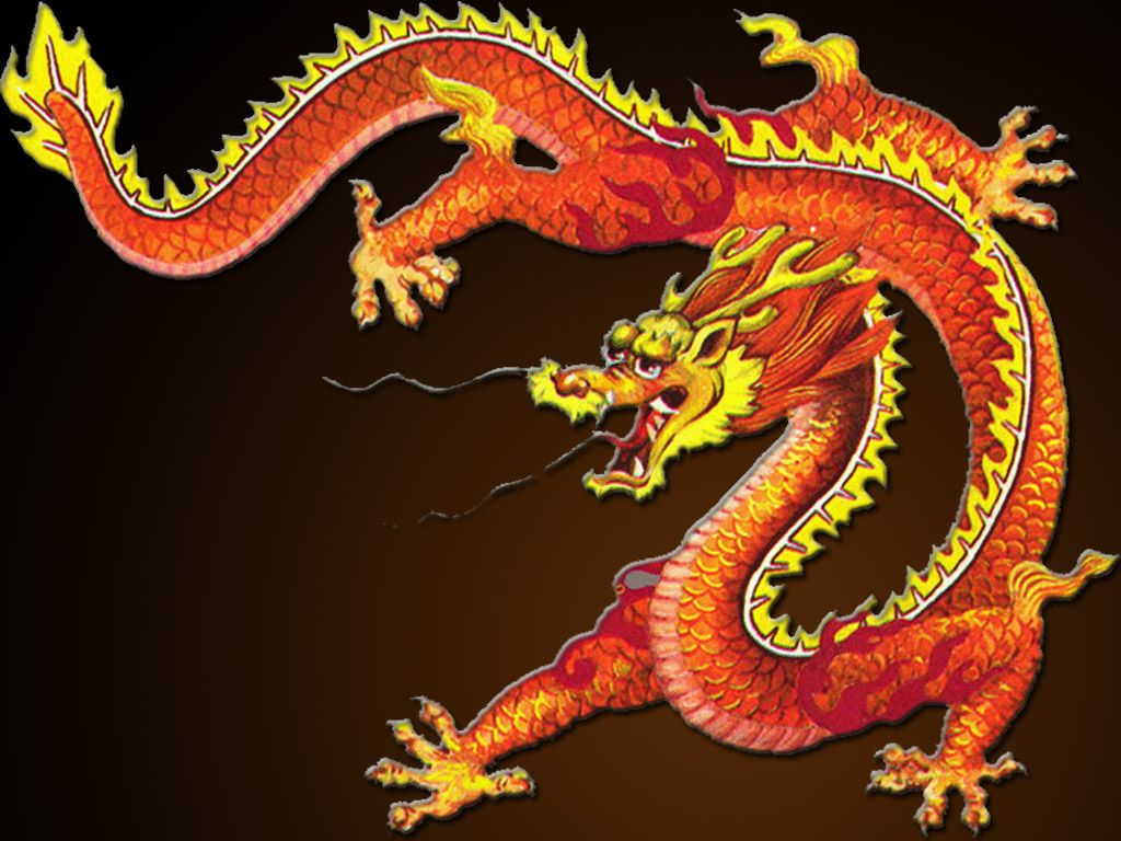 Dragon lore wallpaper wallpapersafari - Chinese Dragon Wallpaper Wallpapersafari