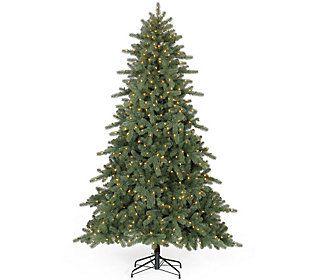 Balsam Hill 5 Northland Pine Christmas Tree W Easy Plug Qvc Com Pine Christmas Tree Balsam Hill Christmas Tree Christmas Tree