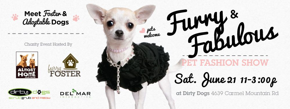 Local nonprofit organization Furry Foster, in partnership
