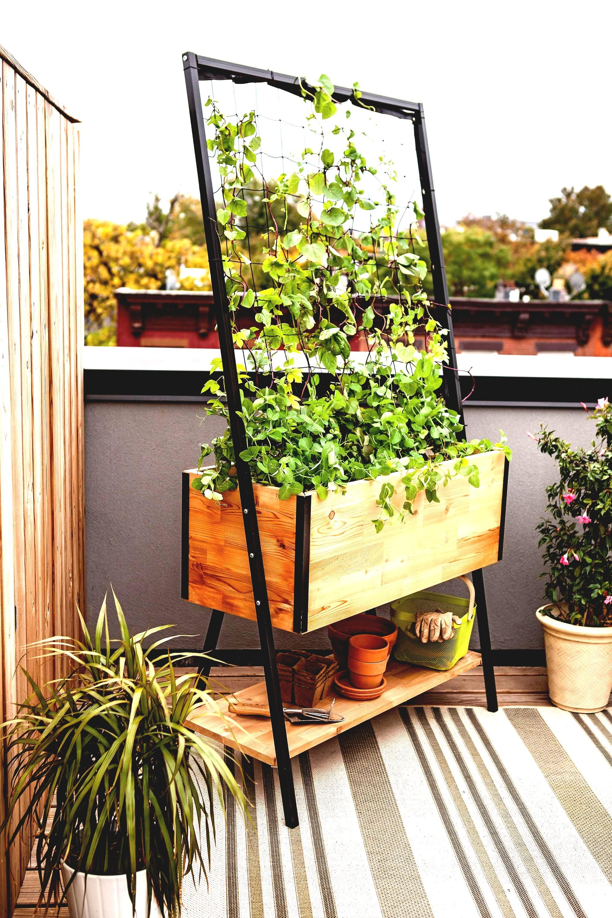 Awesome pots plants on apartment balcony raised garden