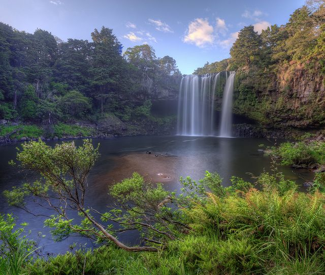 Rainbow Falls, Kerikeri New Zealand | Oh the Places You'll ...
