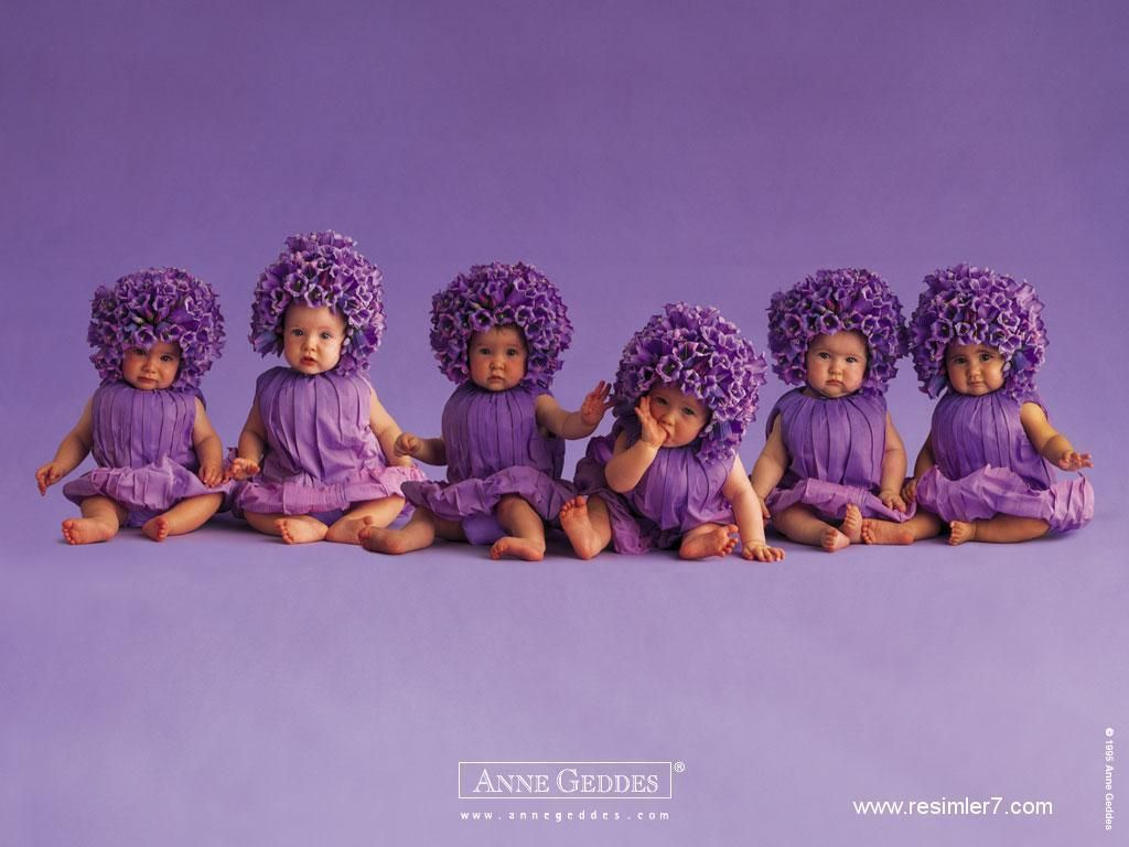 purple flower babies wallpaper as if you u0027d get any work done