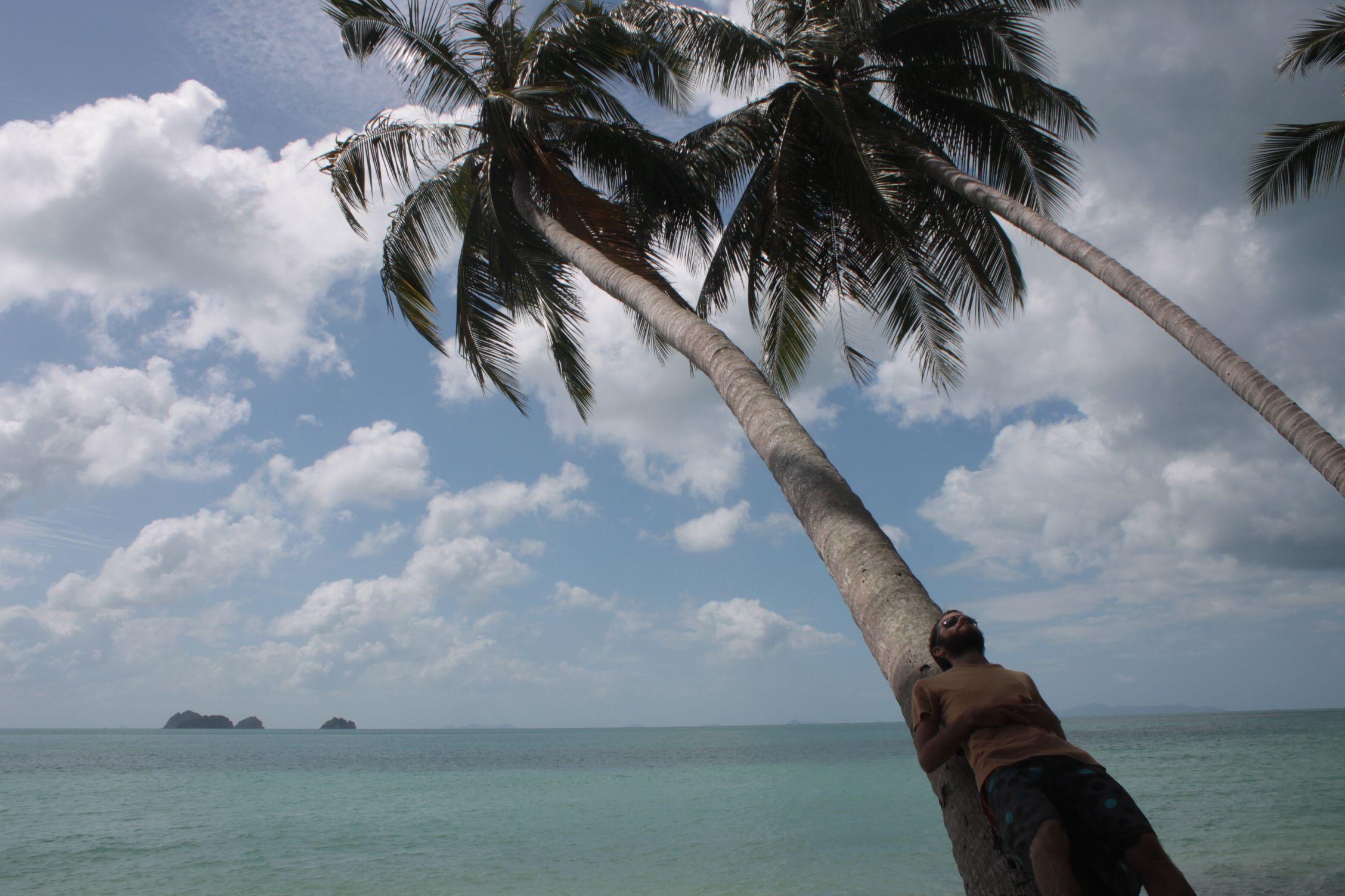 Dani en una palmera de Talim Ngam Beach
