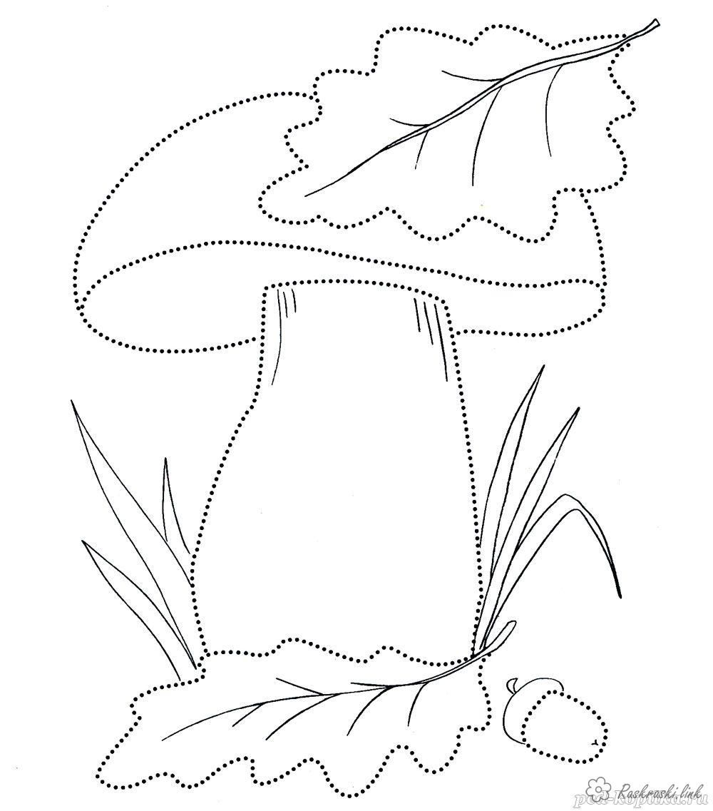 Раскраски Осень раскраска гриб грибок лепесток листья ...