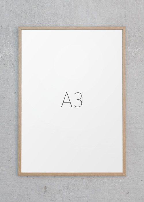 a3 ramme