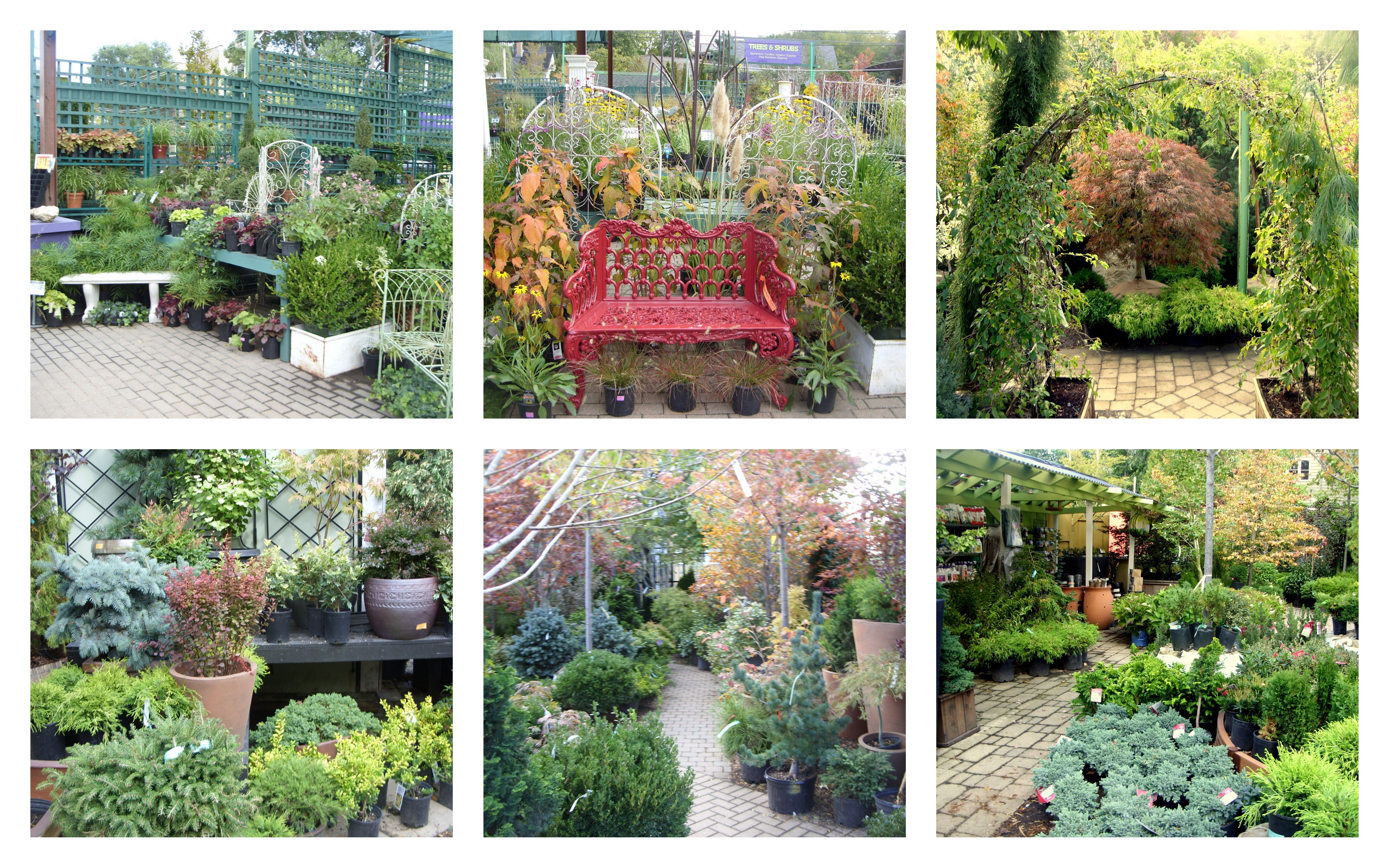 Best Garden Center And Largest In Chicago. Worked Ten Years In Trees And  Shrubs.