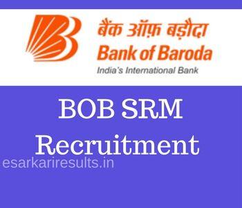 Bank of Baroda SRM Recruitment 2018 Senior Relationship