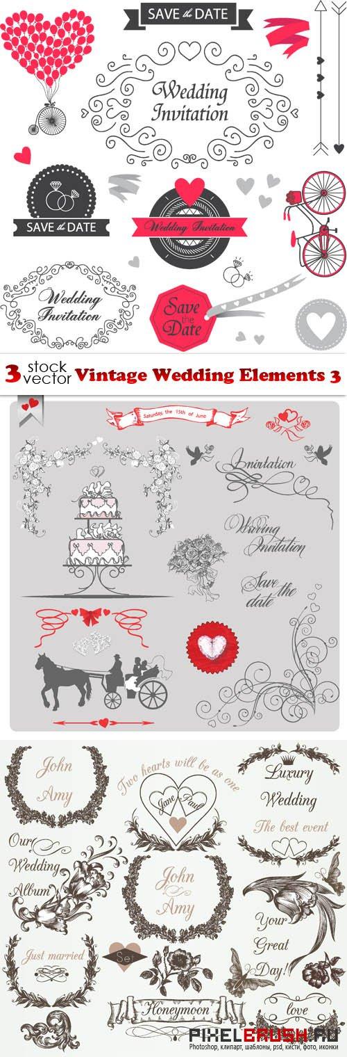 Vectors - Vintage Wedding Elements 3