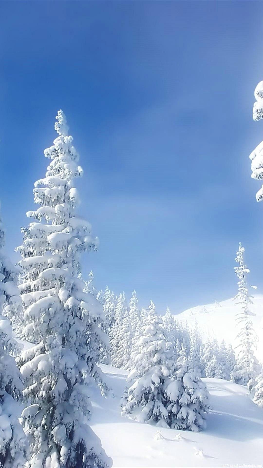 Pure White Snow Iphone Wallpaper Winter Snow Wallpaper Hd Winter Wallpaper