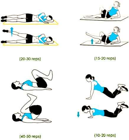 Programme musculation facile from your head to your toes gym workouts sports workout programs - Sport a la maison ...