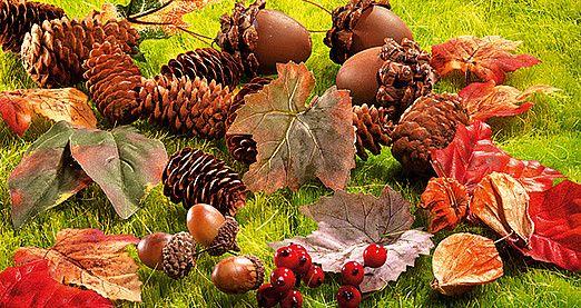 Pin von dekowoerner auf dekowoerner daily pins herbst halloween herbst und laub - Dekoration pilze ...