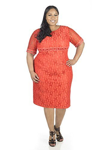 PSD Jessica Howard Women\'s Short Sleeve Lace Shift Dress Plus Size ...