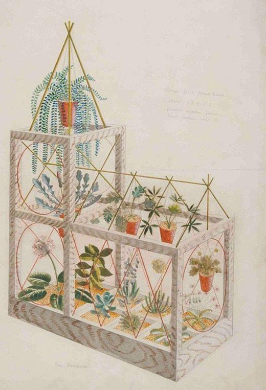 planthouse - Eric Ravilious
