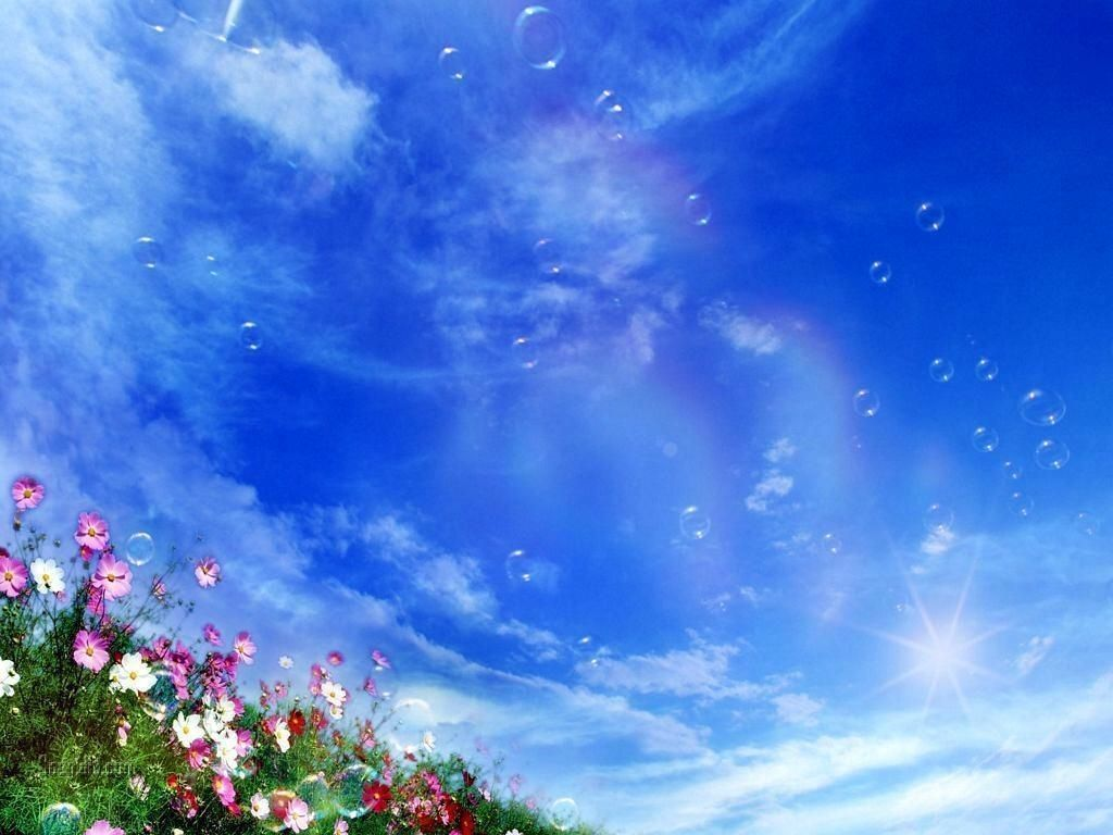 Digital photo 1920*1080 HD JPG Desktop ScreensaverNice FlowersMulti-pictures