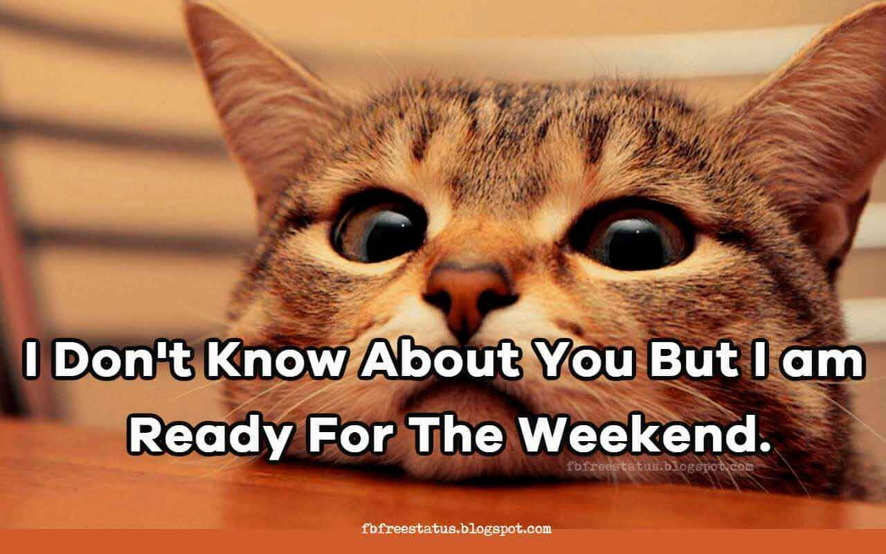 Funny Happy Weekend Memes Quotes With Funny Weekend Images