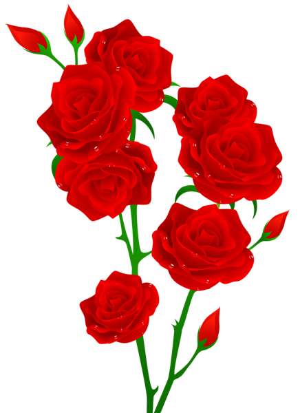 Red Roses Transparent Png Clip Art Image Flower Images Rose Vine Tattoos Beautiful Flowers