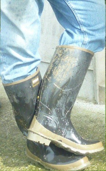Farm Bulls Boots Men Wellies Boots Boots