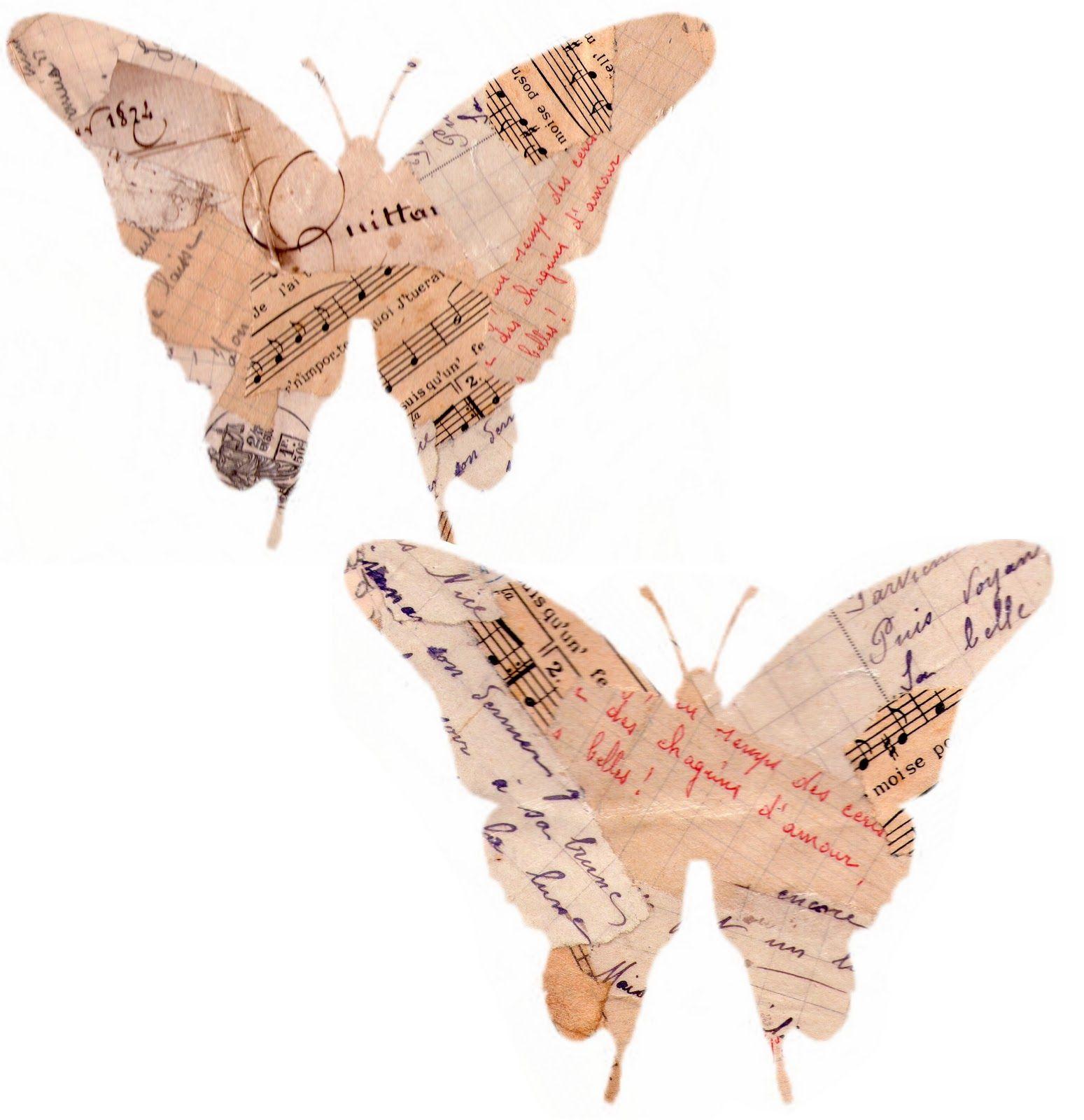 Élégant Image Papillon A Imprimer Gratuit
