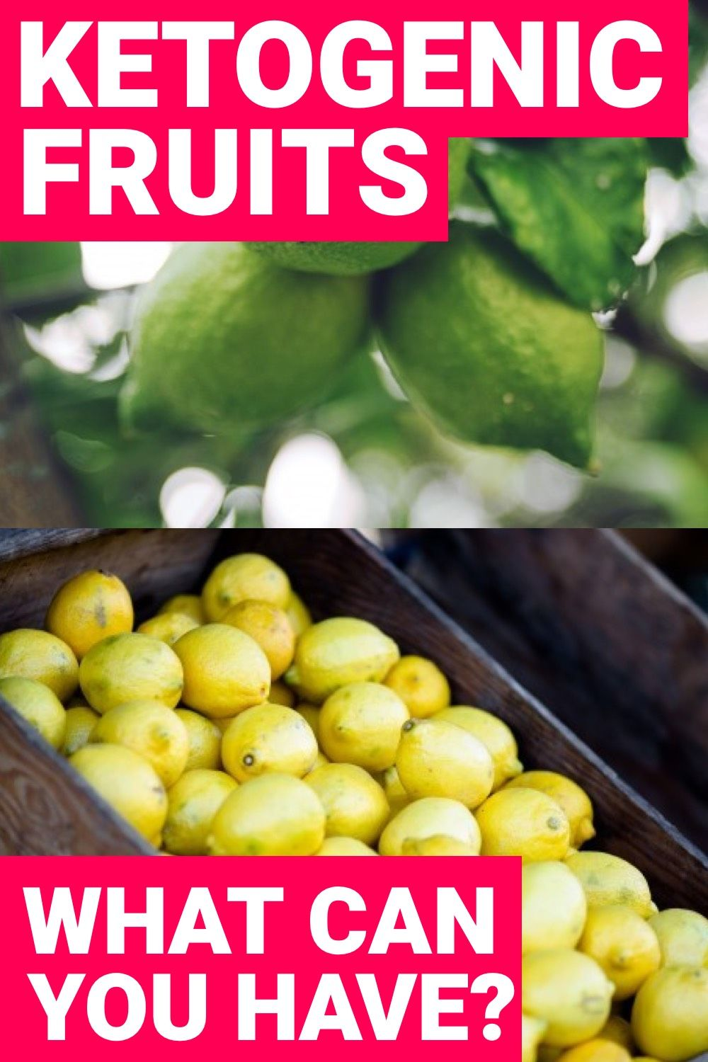 What Fruits Can You Eat on the Ketogenic Diet to Stay in