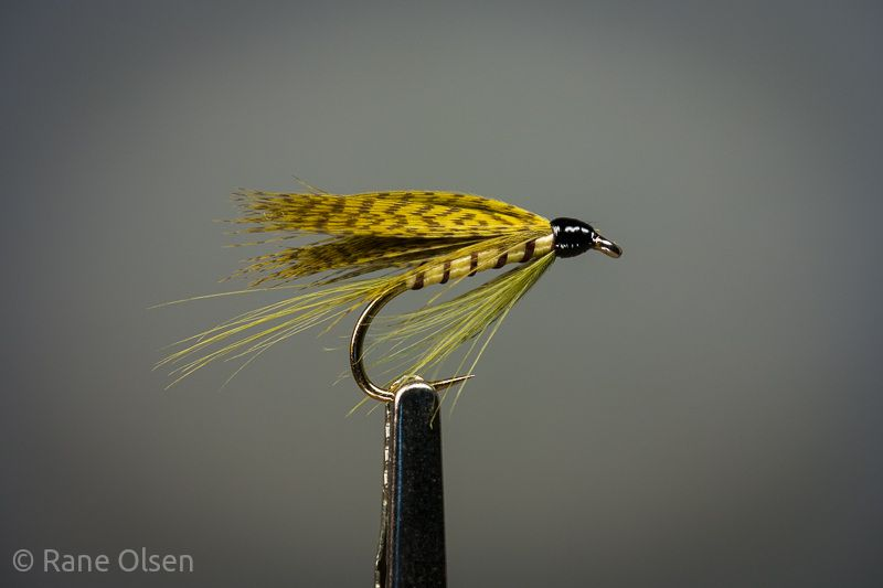 Green Drake- Tail, green hackle fibres, Body, pale yellow floss, Rib, brown thread/floss, Beard, green hackle fibres, Wing, grey mallard dyed yellow.