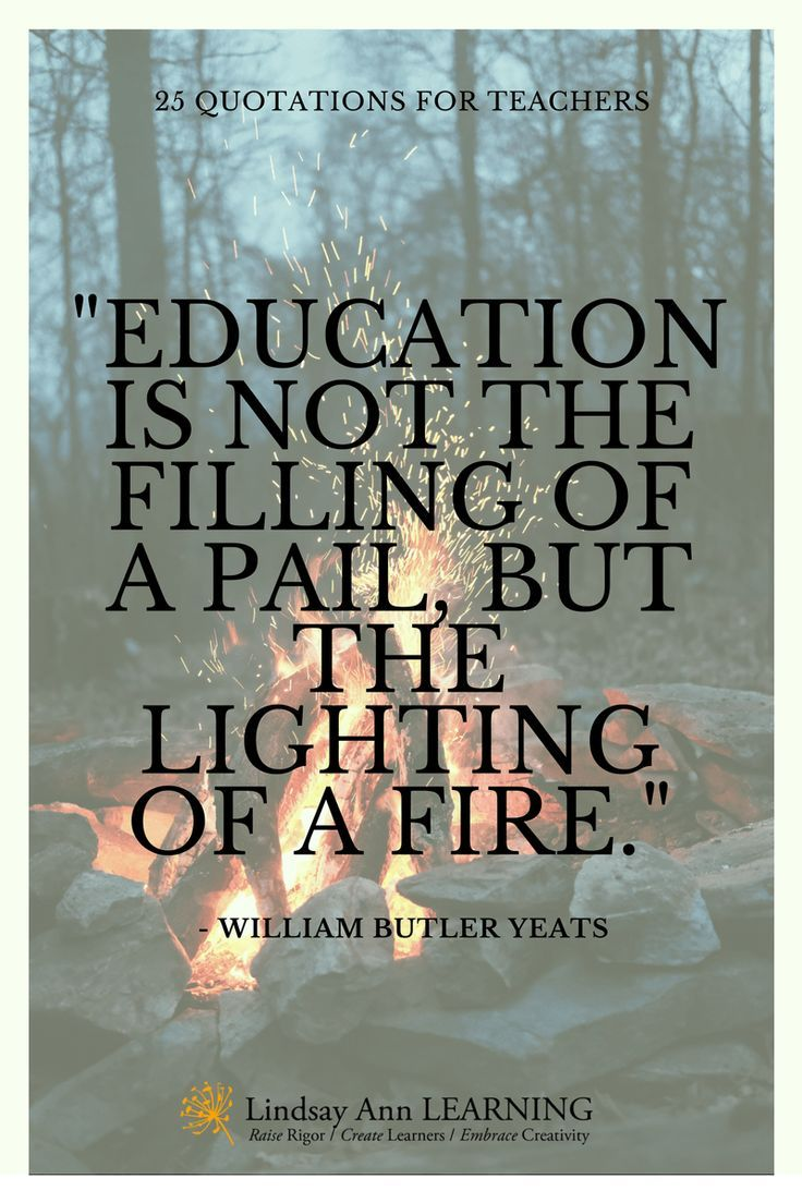 Quotes About Education 25 Best Quotes About Teaching  Ann Learning And Teacher