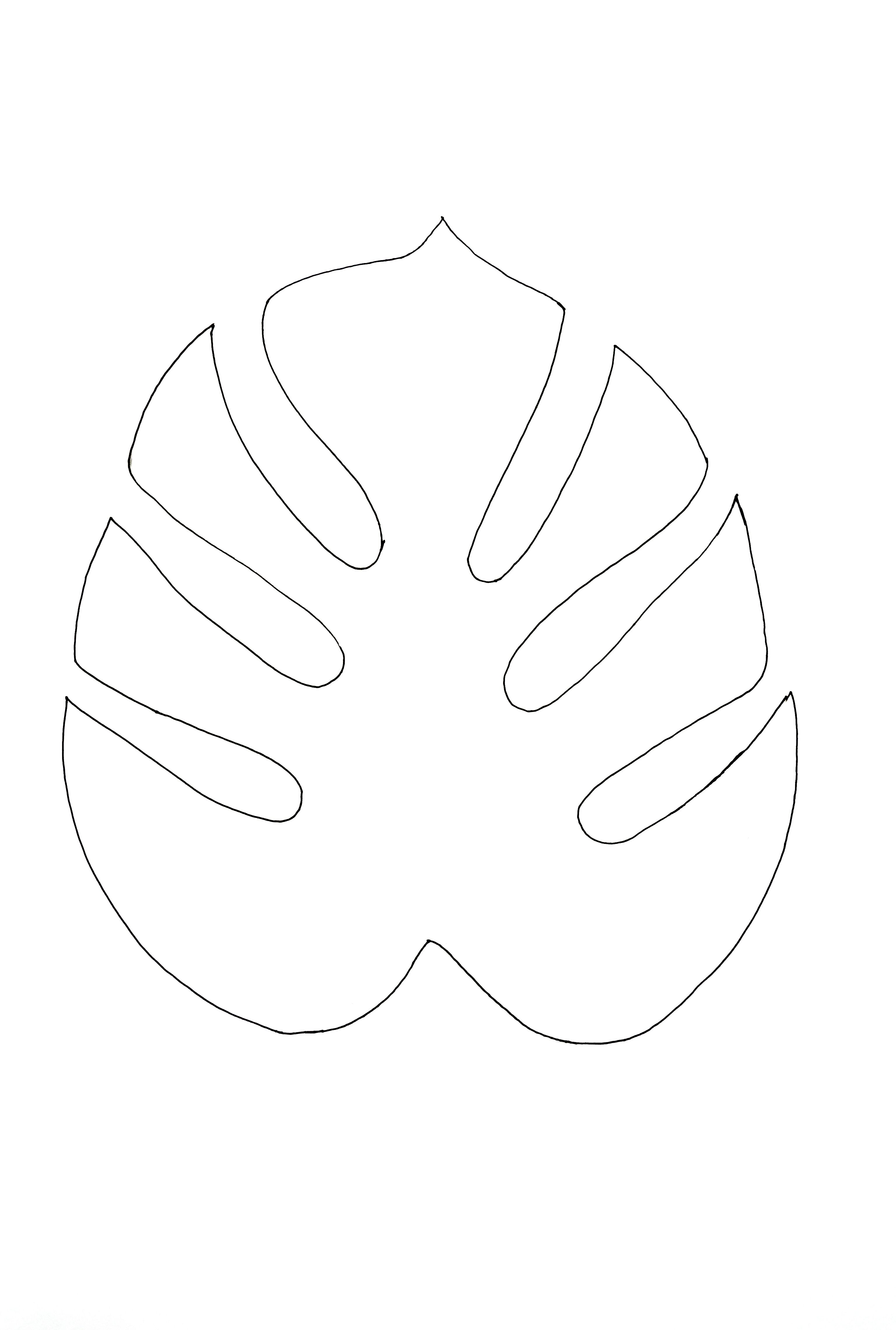 Monstera outlinejpg 3072x4560 printables and designs for Jungle leaf templates to cut out