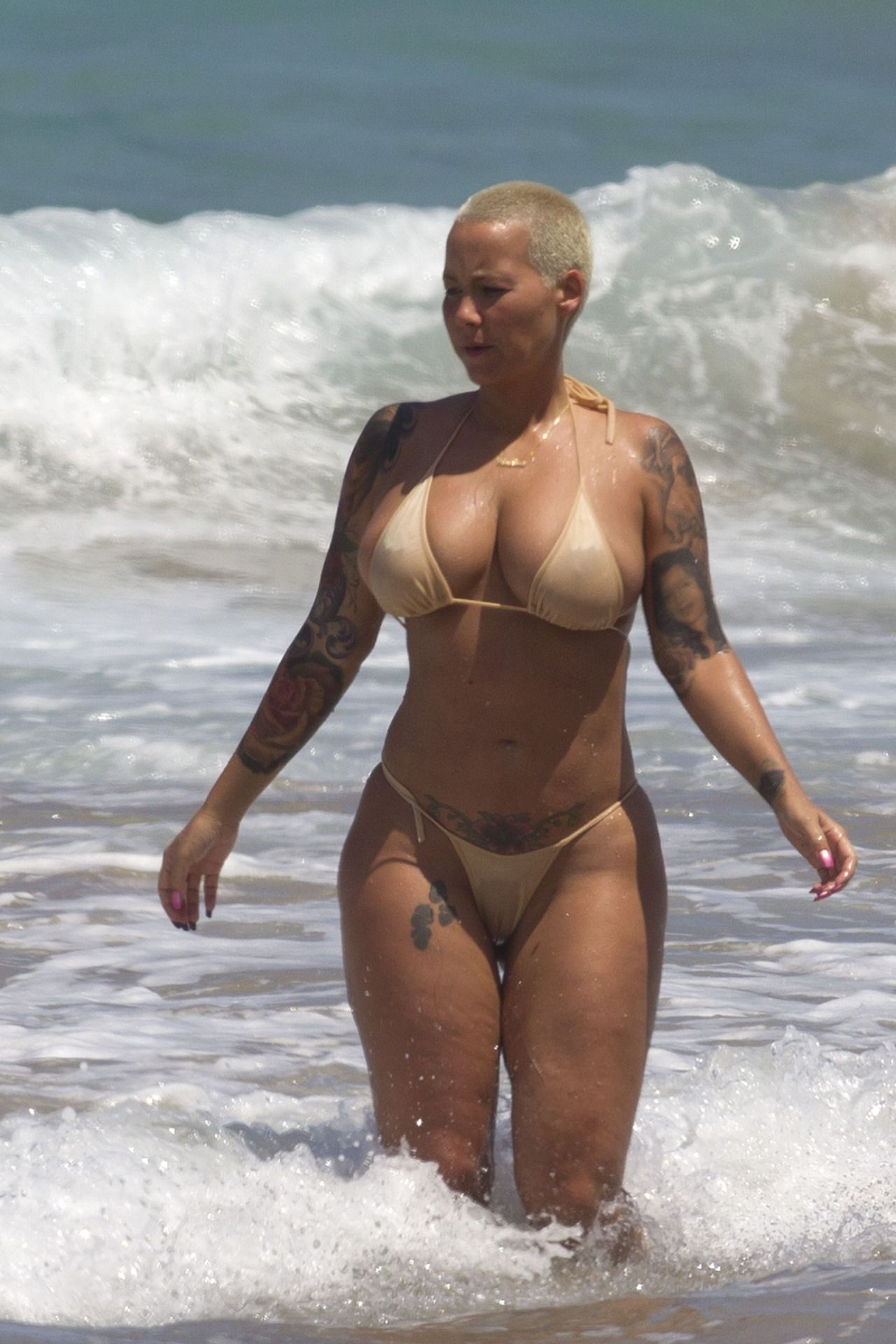 Amber Rose Sextaoe pinasher brooke on amber here's my rose | amber rose