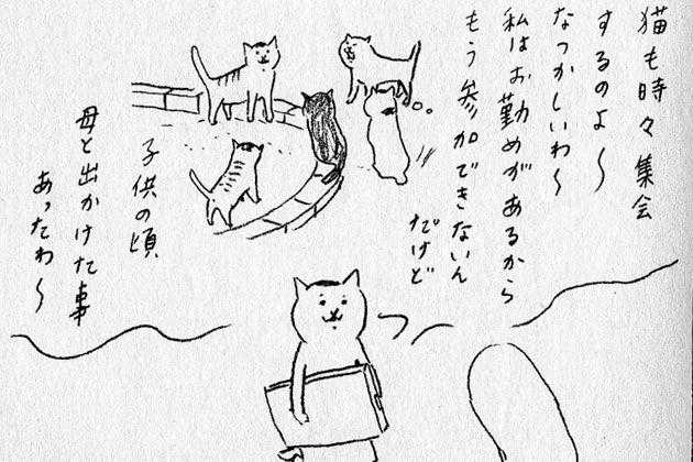 村 今日 さん 猫 の