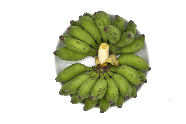baby banana pre order in 2020 baby banana banana how to grow bananas baby banana pre order in 2020 baby banana banana how to grow bananas
