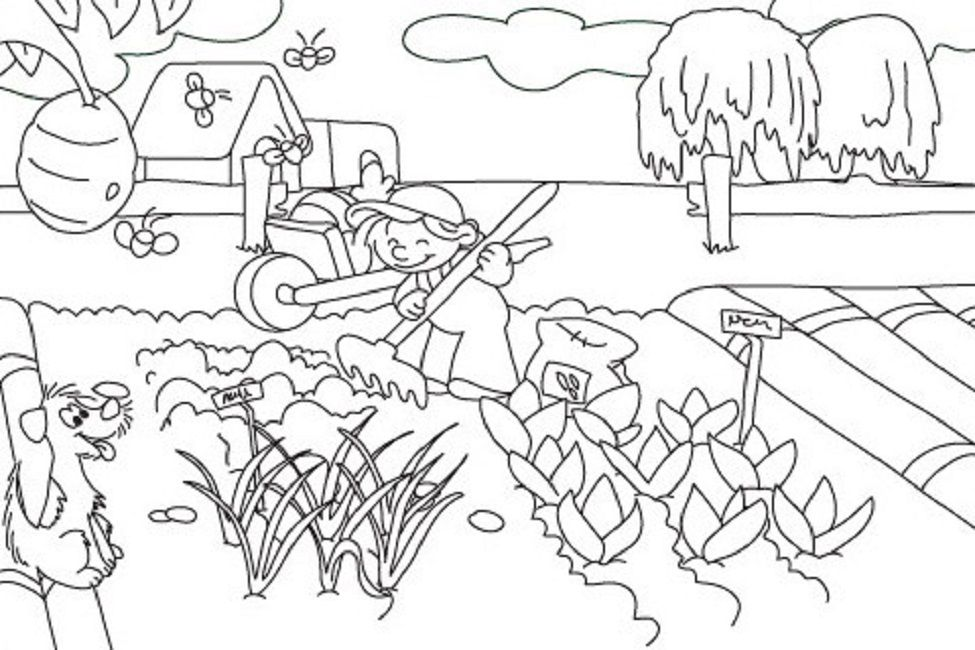 Vegetable Garden Coloring Pages Printable Garden Coloring Pages