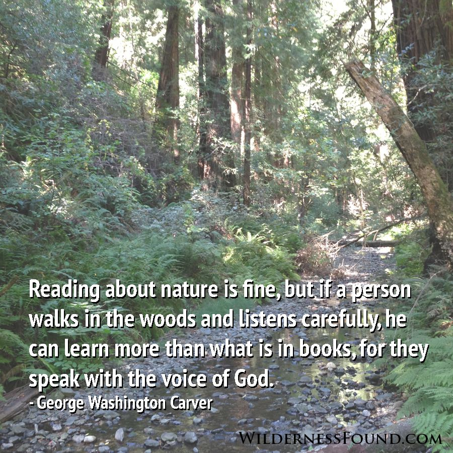 """Woods Quotes: """"Reading About The Nature Is Fine, But If A Person Walks"""