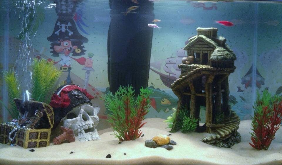 Pirate themed fish tank setup uses some store bought for Fish tank treasure chest