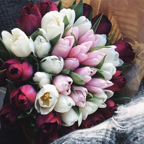 Imagen de flowers, tulips, and pink