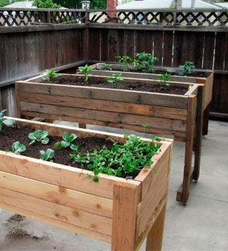 Mesas Se Cultivo Para Crear Un Pequeño Huerto En El Balcón O Terraza Y  Cultivar Las