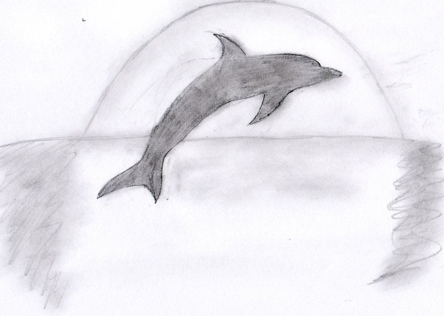 Dolphins Jumping Drawing Drawings Drawing Sketches Sketches