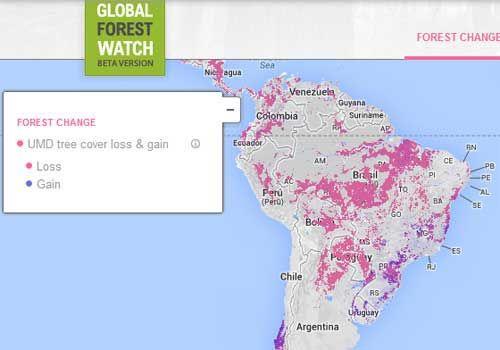 Para hacer un seguimiento de la deforestación en el mundo  Google, organizaciones ecologistas y varios gobiernos presentaron una sofisticada base de datos para hacer un seguimiento de la deforestación en el mundo, con la esperanza de intensificar la lucha contra uno de los principales motivos del calentamiento global. + info: www.barrameda.com.ar/dp/