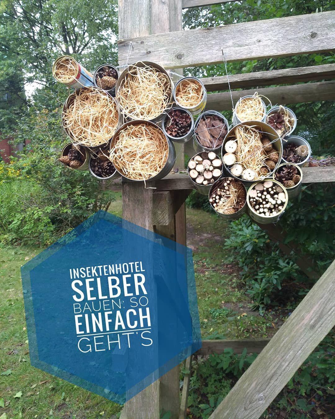 Wir haben auf dem Gemeindefest von St. Petri ein upcycling Insektenhotel gebaut. Du möchtest jetzt auch eins im Garten hängen haben und Insekten einen Platz zum überwintern geben? So einfach geht's. Du brauchst Konservendosen, Draht, einen Nagel, einen Hammer, eine Gartenschere, eine Zange und ein paar Narurmaterialien wie Kiefernzapfen, Stroh, Rindenmulch und #gartenupcycling