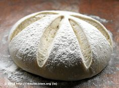 Teigansatz, der (kühl gelagert) mehrfach in 5 Minuten als Brot gebacken werden kann