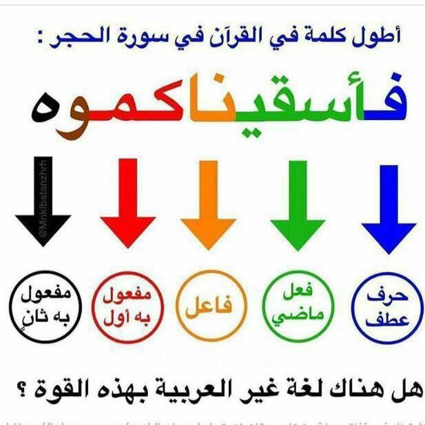 إعراب أطول كلمة في القرآن الكريم أسقيناكموه Words Quotes Words Funny Arabic Quotes